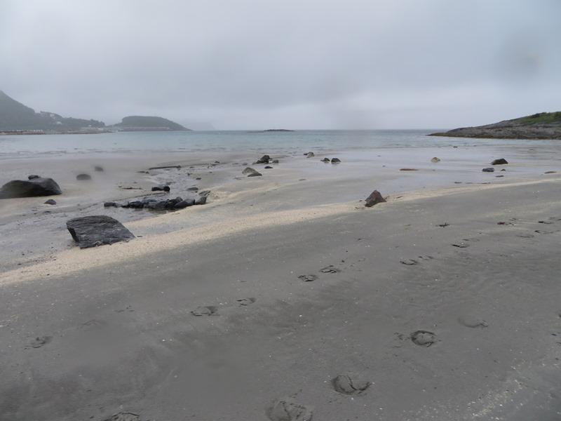 Hufspuren am Strand in Norwegen bei Bodö