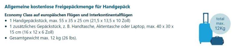Informationen Handgepäck KLM