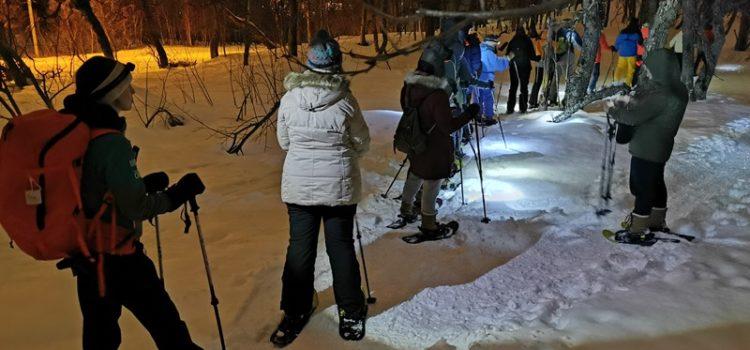 Ausflug in Tromsö: Schneeschuhwandern (Nr.5N)